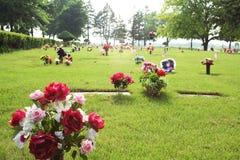 Flores tristes Imagens de Stock Royalty Free