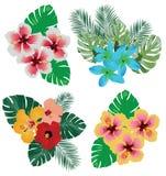 Flores tropicais do vetor ajustadas isoladas no fundo branco ilustração stock