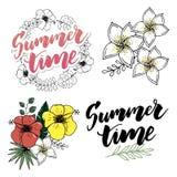 Flores tropicais e folhas ajustadas Flor exótica do Plumeria Grinaldas florais e bandeiras Vetor ilustração stock