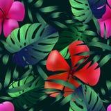 Flores tropicais, folhas da selva Fotografia de Stock Royalty Free