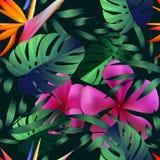 Flores tropicais, folhas da selva Imagem de Stock Royalty Free