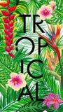 Flores tropicais, folhas de palmeira, flor, tiras Foto de Stock