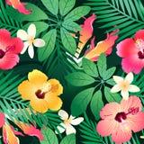 Flores tropicais luxúrias. fotografia de stock royalty free