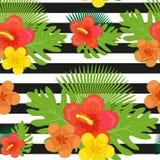 Flores tropicais, plantas, folhas e teste padrão sem emenda das listras preto e branco Fundo floral do verão infinito Foto de Stock Royalty Free