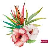 Flores tropicales agradables Foto de archivo libre de regalías