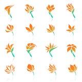 Flores tropicales. Conjunto del modelo de la insignia del vector. Imagen de archivo libre de regalías
