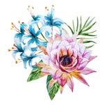Flores tropicales de la acuarela Fotografía de archivo libre de regalías