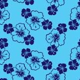 Flores tropicales del hibisco Fotos de archivo libres de regalías