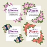 Flores tropicales determinadas con los pétalos y las hojas libre illustration