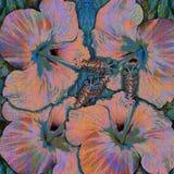 Flores tropicales rosadas y fondo verde, hibisco Imagenes de archivo