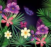 Flores tropicales y del exotics con las mariposas Imagen de archivo libre de regalías