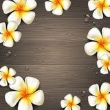 Flores tropicales y descensos del agua en un fondo de madera Imagen de archivo libre de regalías