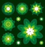 Flores verdes Foto de archivo
