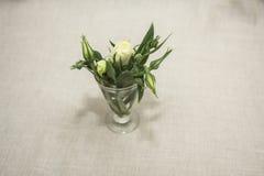 Flores verdes Fotografía de archivo libre de regalías