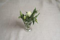 Flores verdes Fotos de archivo libres de regalías