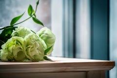 Flores verdes bonitas em uma tabela de madeira fotos de stock