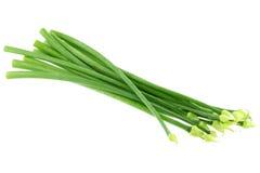 Flores verdes frescas da cebola da mola do Allium Foto de Stock