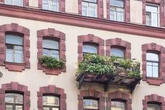 Flores verdes no balcão na fachada elegante da construção europeia velha fotos de stock