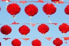 Flores vermelhas da lanterna Fotografia de Stock Royalty Free