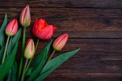 Flores vermelhas das tulipas na tabela de madeira Vista superior, espaço da cópia Foto de Stock Royalty Free