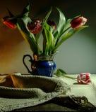 Flores vermelhas e brancas em um close-up azul do potenciômetro fotos de stock royalty free