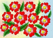 Flores vermelhas Fundo do vetor Fotografia de Stock
