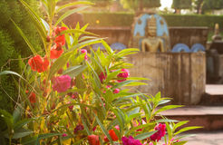 Flores vermelhas honestos e buddha no fundo Imagem de Stock Royalty Free