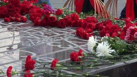 Flores vermelhas no monumento 4K video estoque