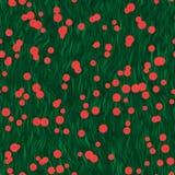 Flores vermelhas no prado Foto de Stock