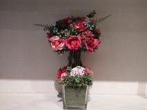 Flores vermelhas que olham perfeitas contra um fundo branco da parede fotografia de stock royalty free