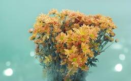 Flores viejas del tono colorido en colores pastel en el fondo verde, foco suave Imagenes de archivo