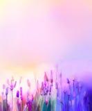 Flores violetas de la lavanda de la pintura al óleo en los prados Imágenes de archivo libres de regalías