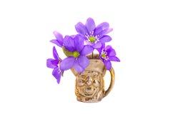 Flores violetas del tiempo de primavera en el pequeño florero de cobre amarillo aislado en blanco Imagen de archivo