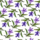 Flores violetas en un fondo ligero Primavera/fondo floral del verano Textura inconsútil con las violetas A mano Para el papel pin ilustración del vector