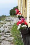 Flores vivas en ventanas del refugio de la montaña Fotografía de archivo libre de regalías