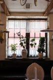 Flores vivas na soleira perto da janela Fotos de Stock Royalty Free