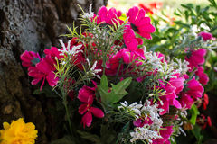 Flores votivas debajo de un árbol Imagenes de archivo