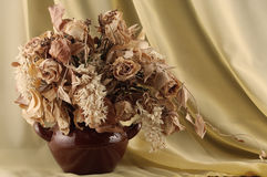 Flores Withered Imagem de Stock Royalty Free