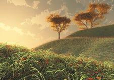 Flores y árboles en la puesta del sol Imagen de archivo