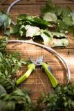 Flores y accesorios de las tijeras que cultivan un huerto Fotos de archivo libres de regalías