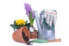 Flores y accesorios que cultivan un huerto para el rellenado Imágenes de archivo libres de regalías