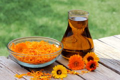 Flores y aceite del Calendula Foto de archivo libre de regalías