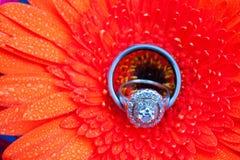 Flores y anillos de bodas Foto de archivo libre de regalías