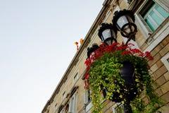 Flores y banderas Foto de archivo