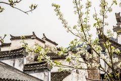 flores y casas imágenes de archivo libres de regalías