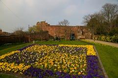 Flores y castillo Imagen de archivo libre de regalías