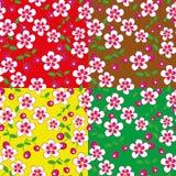 Flores y cerezas en un fondo coloreado Fotografía de archivo libre de regalías