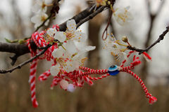 Flores y cinta de la memoria Imagen de archivo