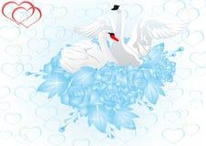 Flores y cisnes ilustración del vector