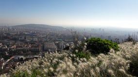 Flores y ciudad de las opiniones de Barcelona foto de archivo